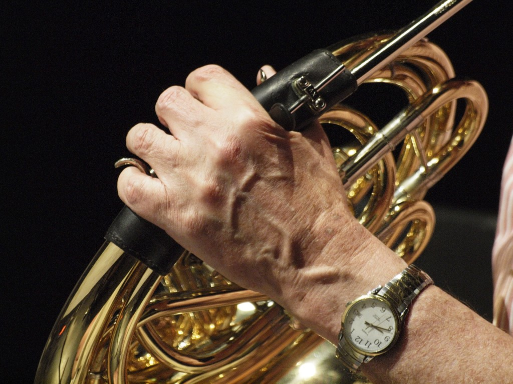 Hand on French Horn